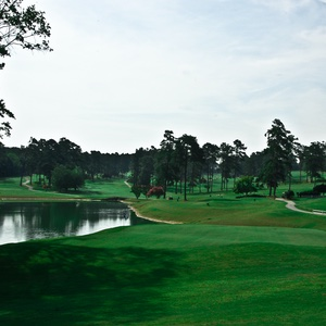 Forest-Hills-Golf-Club-Augusta-Georgia-Sports-and-Recreation-Recommendation-Rentabususa.com.jpg